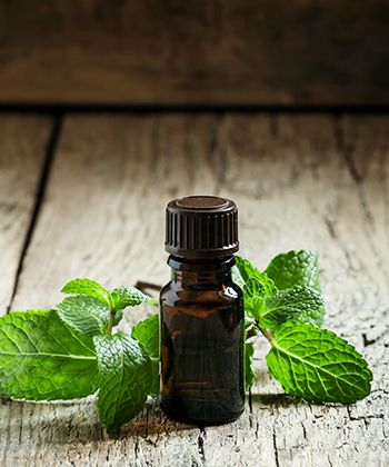 Why You Should Try Peppermint Oil For Your Hair This Winter