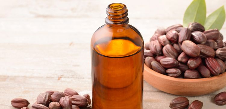 Jojoba oil in a brown bottle and a bowl of jojoba kernels, brown wrinkly oval nuts