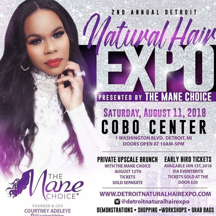 Detroit Natural Hair Expo