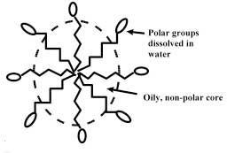 curly hair chemistry