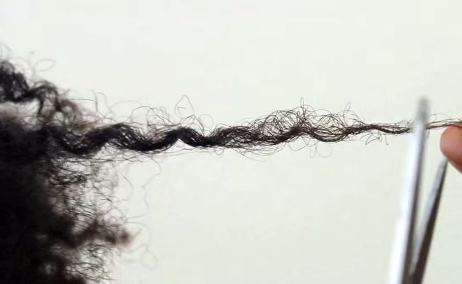 curly hair split ends