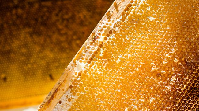 A photo of golden honeycomb