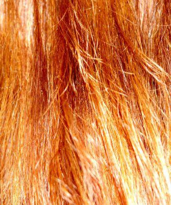 red hair ceramides