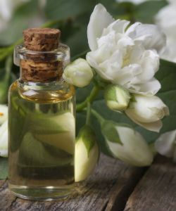 The Benefits of Jasmine Oil for Hair & Skin