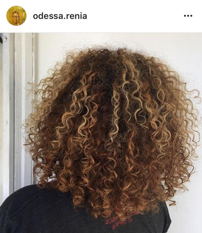 15 Natural Hair Salons In La Naturallycurly