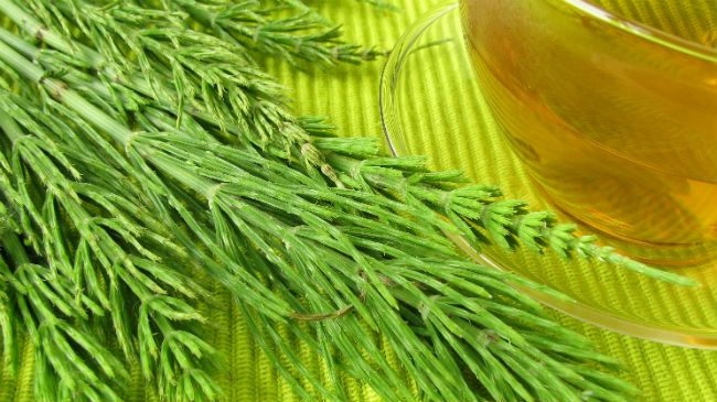 horsetail rinse for hair