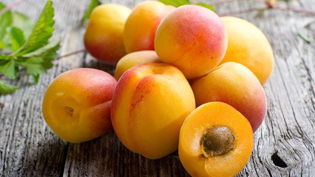 apricot oil benefits for hair