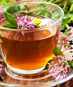 This Tea is Not Just Good for Menopause, It Could Help with Alopecia Too