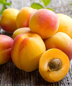 6 Benefits of Apricot Oil for Softer, Moisturized Hair