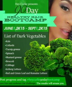 The 90 Day Healthy Hair Bootcamp