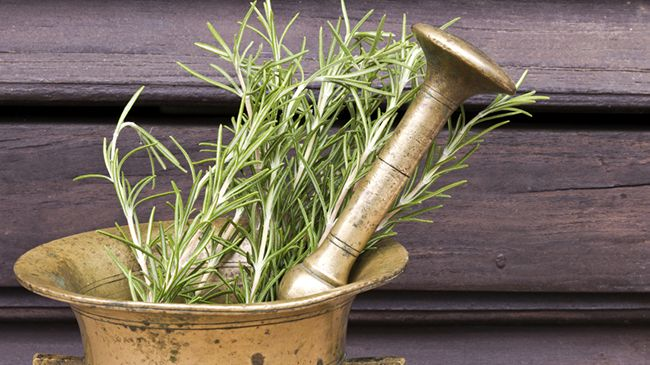 The Best Way to Use Rosemary for Hair Growth
