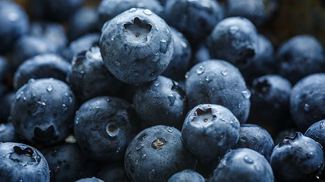 3 Benefits Of Blueberries For Natural Hair Growth Naturallycurly Com