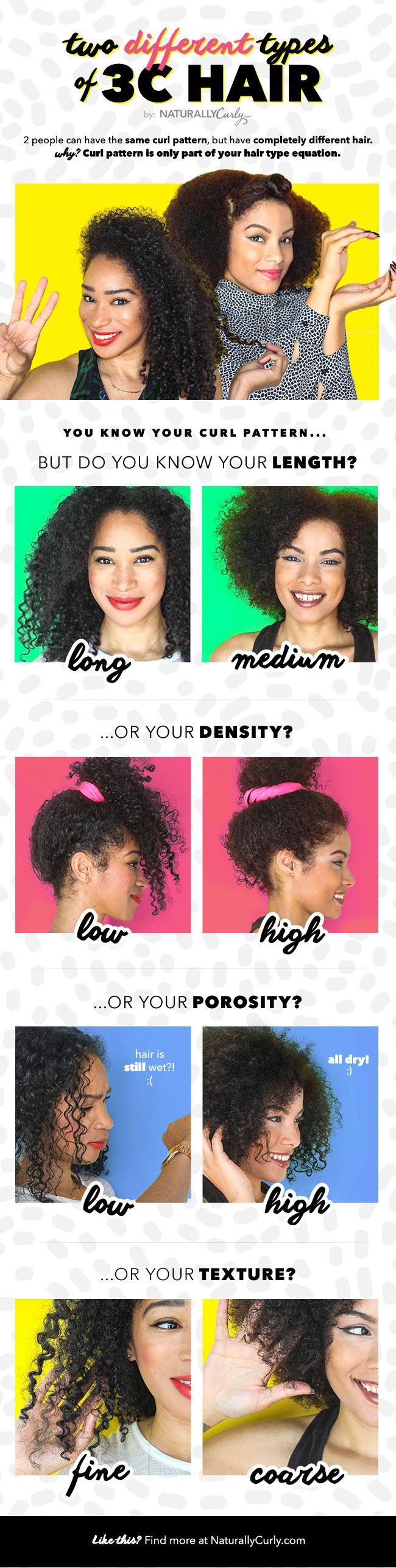 3c hair type infographic