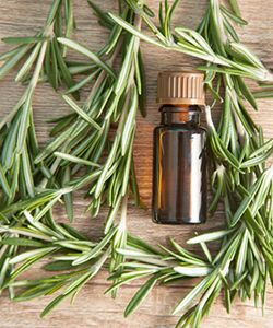 Top 10 Shampoos with Rosemary