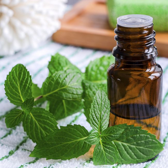 peppermint oil for hair