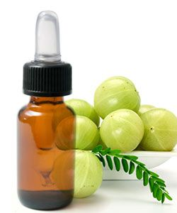 Amla: Miracle Oil or Too Good to Be True?
