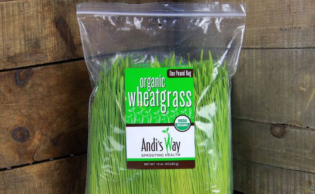 wheatgrass for gray hair