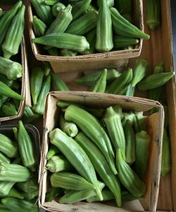 Why Gombo (aka Okra) Is an Amazing Detangler