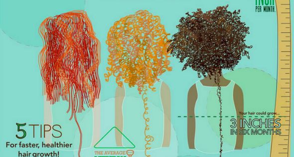 Curly Hair Growth Chart Naturallycurly Com