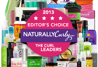 2013 Editors' Choice Awards