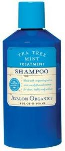 Tea Tree Mint Treatment Shampoo